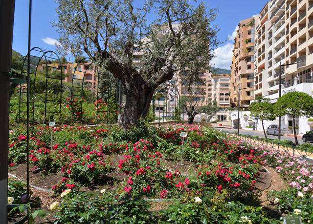 Columbus Monte Carlo Save Up To 70 On Luxury Travel