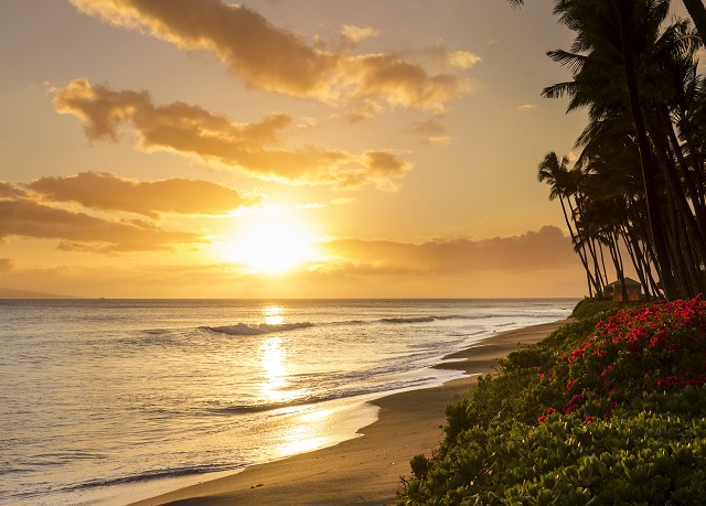 Royal Lahaina Resort Save Up To 70 On Luxury Travel