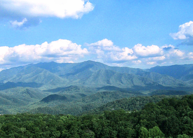The foxtrot bed breakfast save up to 60 on luxury for Bed and breakfast for sale in tennessee