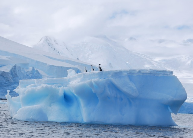 Lindblad Expeditions Celebrates 50th Anniversary of First ...