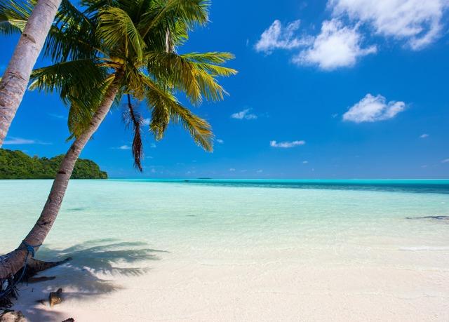 Flights From Orlando To Cayman Islands