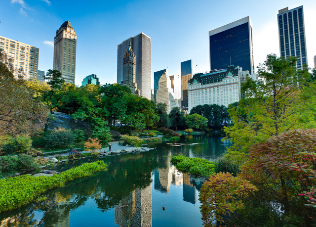 Award winning boutique hotel near central park save up for Hotels near central park new york
