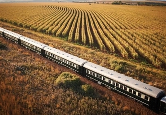 South Africa escape with luxury Rovos Rail journey & optional safari, Cape Town, Stellenbosch, a Rovos Rail experience & more - save 22%