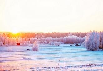 Swedish Lapland glamping trip with Northern Lights tours, Brändön Lodge, Luleå - save 33%