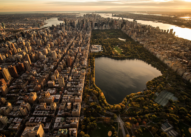 central park an escape essay