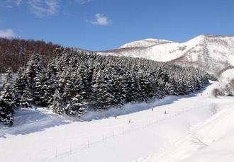 Chalet Ivy, Hokkaido, Japan - save 32%