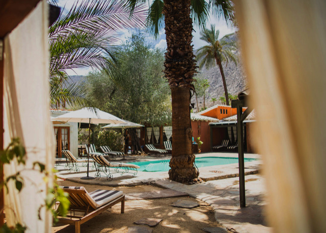Romantic b b oasis in sunny palm springs save up to 70 for Plush pad palm springs