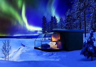 Spectacular Lapland wildlife break with optional igloo stay   husky ride de1fb384e7d79