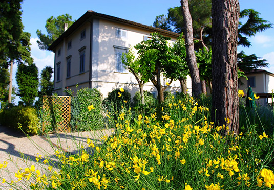 Buy San House Gimignano cheaply near the sea