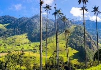 hot sale online 847fd 46e4a Magnifieke rondreis in het swingende Colombia